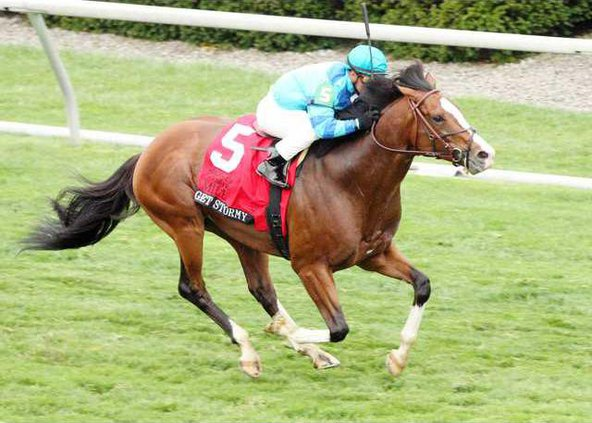Get Stormy - The Makers Mark Mile Gr 1 - 23rd Running - Aerial.JPG