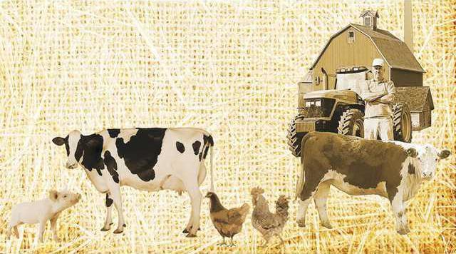 farm background Web