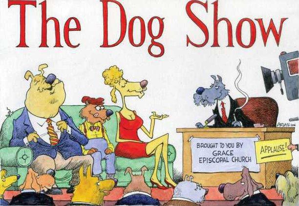 Dogshow WEB
