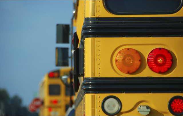 Buses - 09-08-14