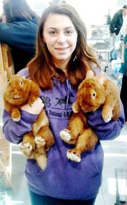 Rabbits - Kat Ellig Web