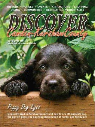 Discover Magazine cover