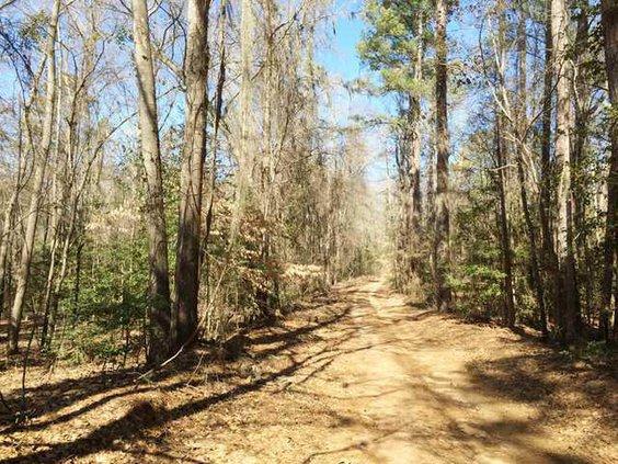Long Walk 3 - Road